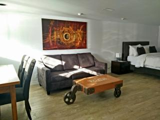 New Spacious 1br suite downtown Toronto - Toronto vacation rentals