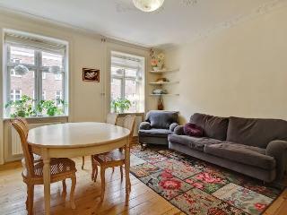 Copenhagen apartment near Amager shopping center - Copenhagen vacation rentals