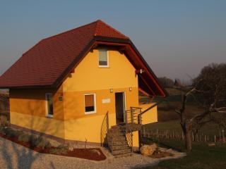 Apartment Vinska Trta*** - Dobova vacation rentals