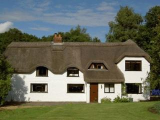 Plum Tree Cottage - New Forest vacation rentals