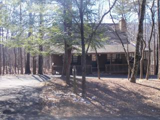81 Lady Slipper Lane - Big Canoe vacation rentals