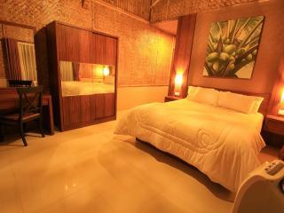 2 BR + 1 BR, De Reiz Villa Ethnic Syariah - Java vacation rentals