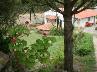 Sozo Art / Creative Retreats - Sao Martinho do Porto vacation rentals