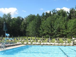Amazing! Pinecrest Lake 3BR, 2BA w/Club Membership - Pennsylvania vacation rentals