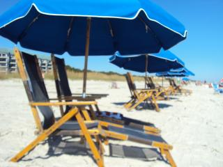 Beach Resort - Hilton Head vacation rentals