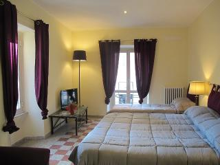Times Rome Colosseum-Comfort, simple and wide apt. - Lazio vacation rentals