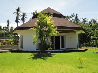 1 bedroom beach front villa in dauin - Dauin vacation rentals