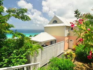 An Ocean View Villa 2 Minutes To The Beach - Long Bay vacation rentals