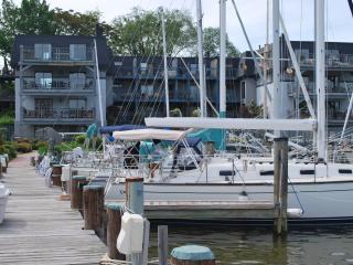 316 Burnside St Unit 201 - Central Maryland vacation rentals