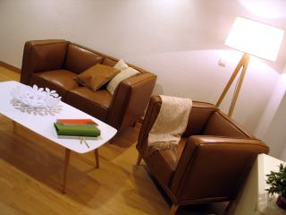 Charming Apartment in the Centre 12 - Salamanca vacation rentals