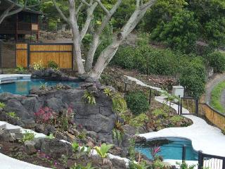 Fruit Tree Combo- Amazing Views, Jungle Atmosphere - Kona Coast vacation rentals