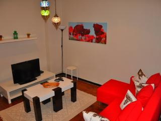 COMFY 1302 TAKSIM-GALATA APARTMENT - Istanbul vacation rentals