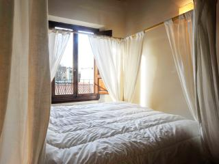 Charming 2 Bedroom Apartment in Florence at Leone - Tuscany vacation rentals