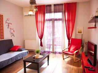 COZY COMFORT APARTMENT IN TAKSIM-GALATA - Istanbul vacation rentals