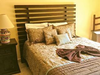 Paseo del Sol, 102 cenote, 3 bedrooms - Playa del Carmen vacation rentals