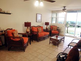 #4 Beachfront Apartment - Jobos Beach Isabela PR - Isabela vacation rentals