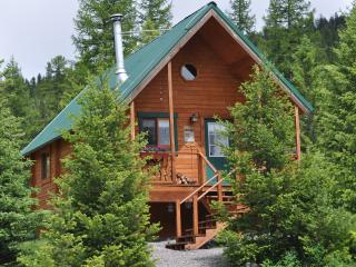 Little Bear Lodge - Lakeside vacation rentals