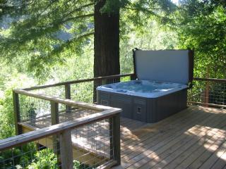 Zin & Zen on the River in Wine Country-Hot Tub, - Guerneville vacation rentals