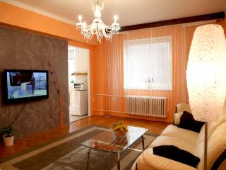 apartment Masarykova 61 - Olomouc vacation rentals