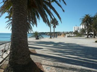Super large Studio 3 mins   to the beach / 7A - Armação de Pêra vacation rentals
