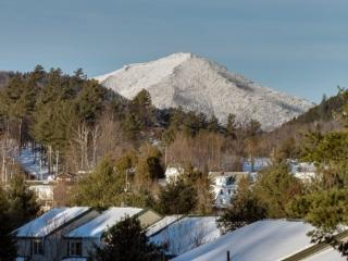 Pinehill Townhome #47 - Eagle Nest - Lake Placid vacation rentals
