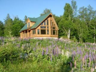Desiree Lane - Lake Placid vacation rentals