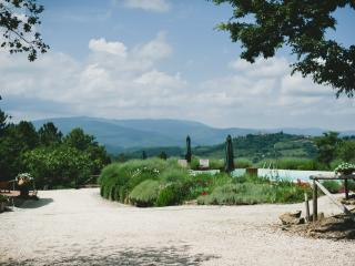 In Tuscany - Private Villa with swimming pool - Radicondoli vacation rentals