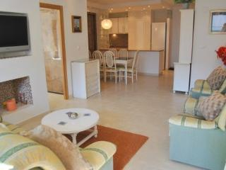 A LUXURIOUS BRIGHT SPACIOUS  MODERNIZED APARTMENT - Marbella vacation rentals