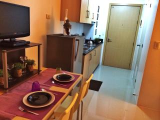 1 bedroom fully furnished condo - National Capital Region vacation rentals