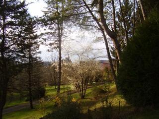 CRO BIQUE Holiday home - Dordogne Region vacation rentals