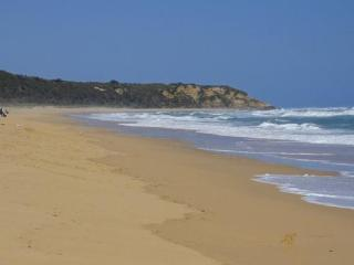 108 Golflinks Road - Eastern Beach Cottage - Lakes Entrance vacation rentals