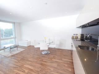 High Spec 2 Bed City Apt Sleeps 6 (mw1) - Manchester vacation rentals