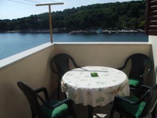 Apartman Mira with balcony - Prvic vacation rentals