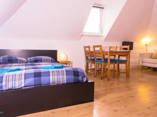 Central Apartment West Kruiskade5 - Schipluiden vacation rentals