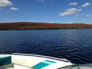 Four Season Muskoka Lakefront Rental - Ontario vacation rentals