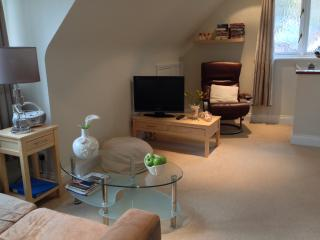 The Willows - Henley-on-Thames vacation rentals