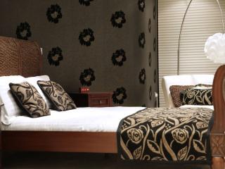 Fantastic Jewellery Quarter Birmingham 2 Bed Home - Birmingham vacation rentals