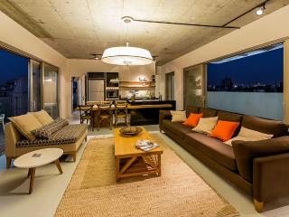 Beautiful 4BD penthouse in Jaffa - Israel vacation rentals