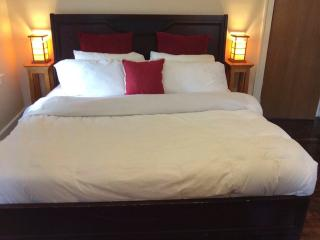 Cozy King Suite ♦ Last Minute Ok! - Detroit vacation rentals