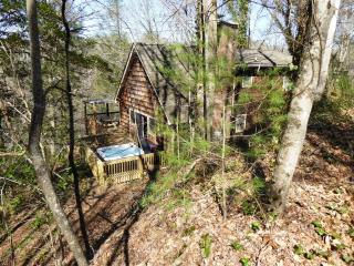 NATURE'S RETREAT CABIN near Cherokee and Casino - Cherokee vacation rentals