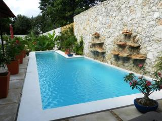 Contemporary Home with Lap Pool and Outdoor Shower - Merida vacation rentals