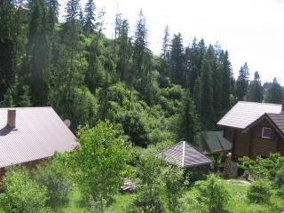 Gorez - Slavskoye vacation rentals