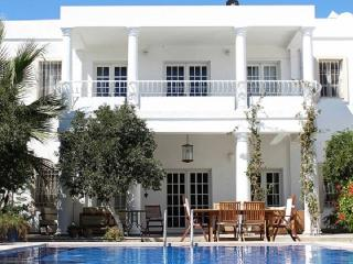 Exclusive Luxury Home - VILLA SATSUMA - Gundogan vacation rentals