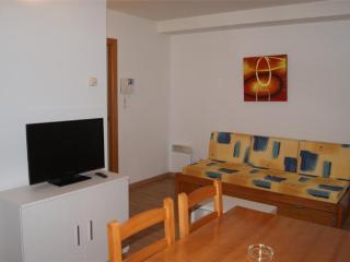 APARTAMENTOS BORRUSCALL - 4/6 estandar - Andorra vacation rentals