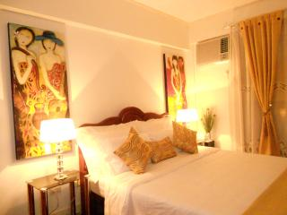 2 Bdr. Fully Furnished Condo Manila - Luzon vacation rentals