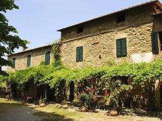 Villa Romanica - Castelnuovo Dell'abate vacation rentals