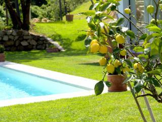 Villa Limona - Rignano sull'Arno vacation rentals