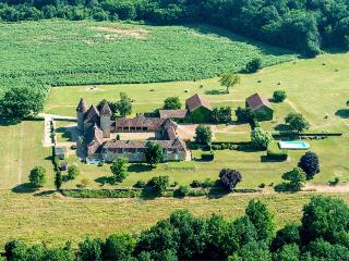 Chateau De Theleme - Biron vacation rentals