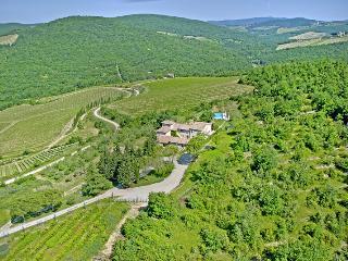 Villa Gaiole - Tuscany vacation rentals