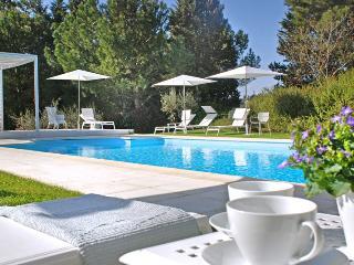 Villa San Miniato - San Miniato vacation rentals
